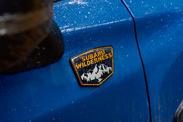 Subaru Forester Wilderness Edition 2022 : à assauts des forêts